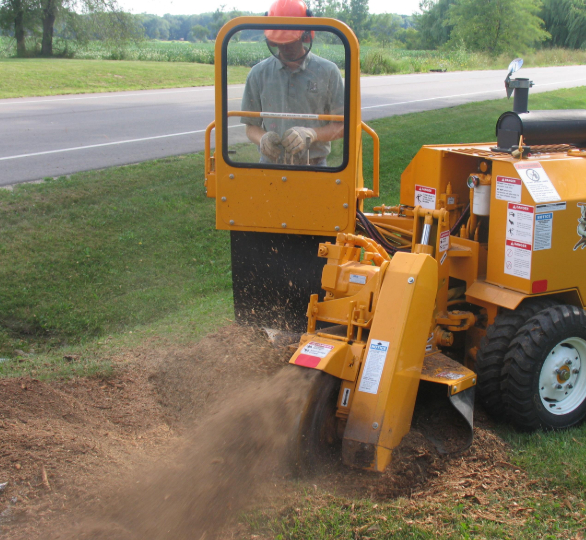 a picture of stump grinding machine in Fountain Valley, CA