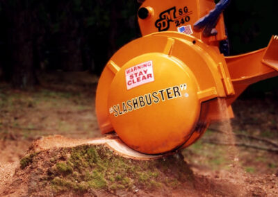 this image shows stump grinding in fountain valley, ca